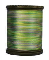 Tiara #50 Variegated Filament Silk Thread. #604. 273 Yds.