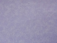 Quilting Treasures Quilting Essentials Lavender